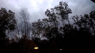 crazy wind, trees blowing sideways