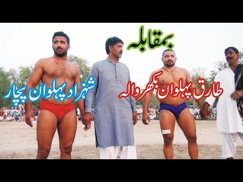 shahzad pehlwan pachar vs tariq pehlwan bhakkar