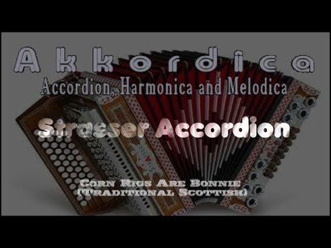 Akkordica Piano Accordion Anglo Concertina Strer Hohner Musette Harmonica Melodica Pianica Accordina Harmonicon
