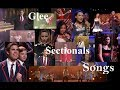 glee sectionals song