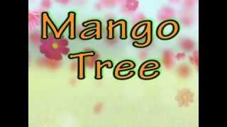 Mango Tree Lyrics- Zac Brown Band (WITH SONG!)