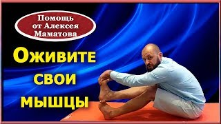 Оживите свои мышцы. Адаптивный комплекс упражнений от Алексея Маматова