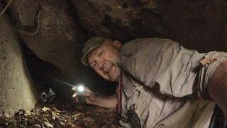 Пригоди фокса в печері!