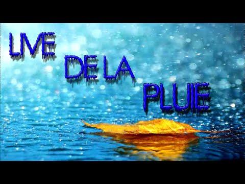 Live de la pluie!!