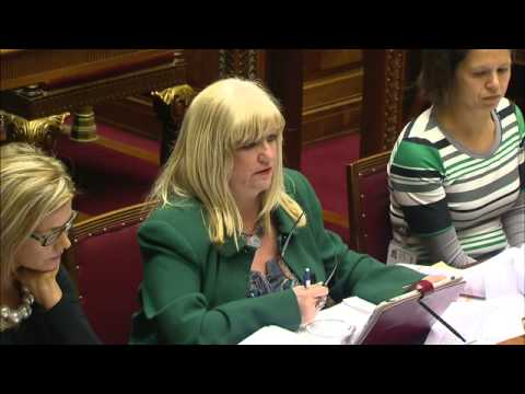 Health, Social Services and Public Safety Committee Meeting 19 November 2014