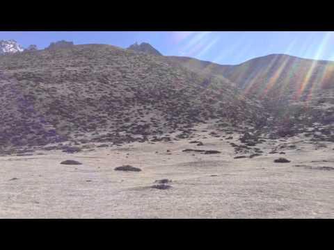 Independent ,adventure,freelance trekking guide&tour operator Nepal