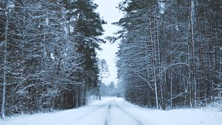 Rydzewo | Winter