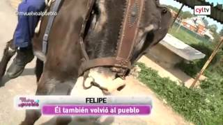 ME VUELVO AL PUEBLO (02/06/2014). Ampudia (Palencia) y Azadinos (León)