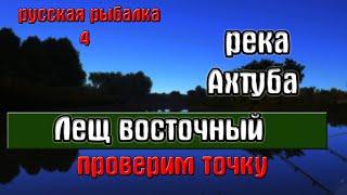 Русская рыбалка 4 рр4 река Ахтуба Лещ восточный