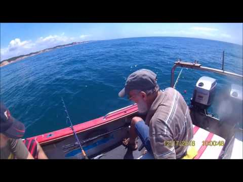 Offshore fishing. catch and cook snapper salmon