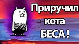 Приручил кота БЕСА ! ( Battle Cats )