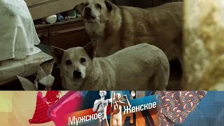 В заложниках. Мужское / Женское. Выпуск от 29.05.2019