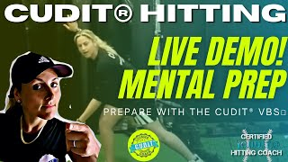 Mental training tips for hitters going up to bat w. the founder of CUDIT Concentric Hitting!