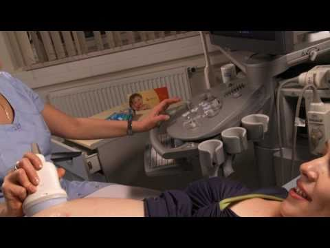 Видеогид. 29 неделя. Сбор и хранение пуповинной крови