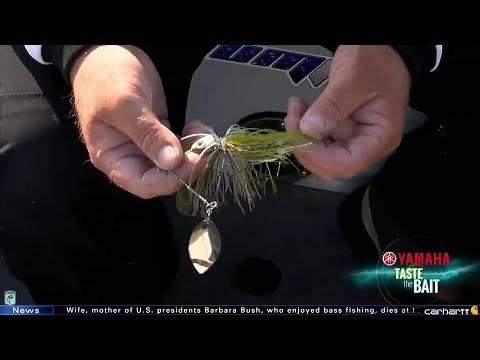 Taste the Bait: Roy Hawk's spinnerbait at Grand Lake
