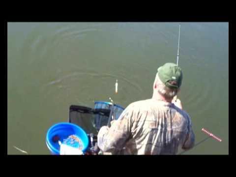 BreakingSurface (vs) Coarse & Predator Inter Forum Fishing Match(part 1)