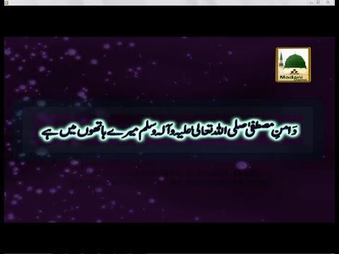 Daman e Mustafa Mere Hathon Mein Hai - Maulana Ilyas Qadri - Short Bayan