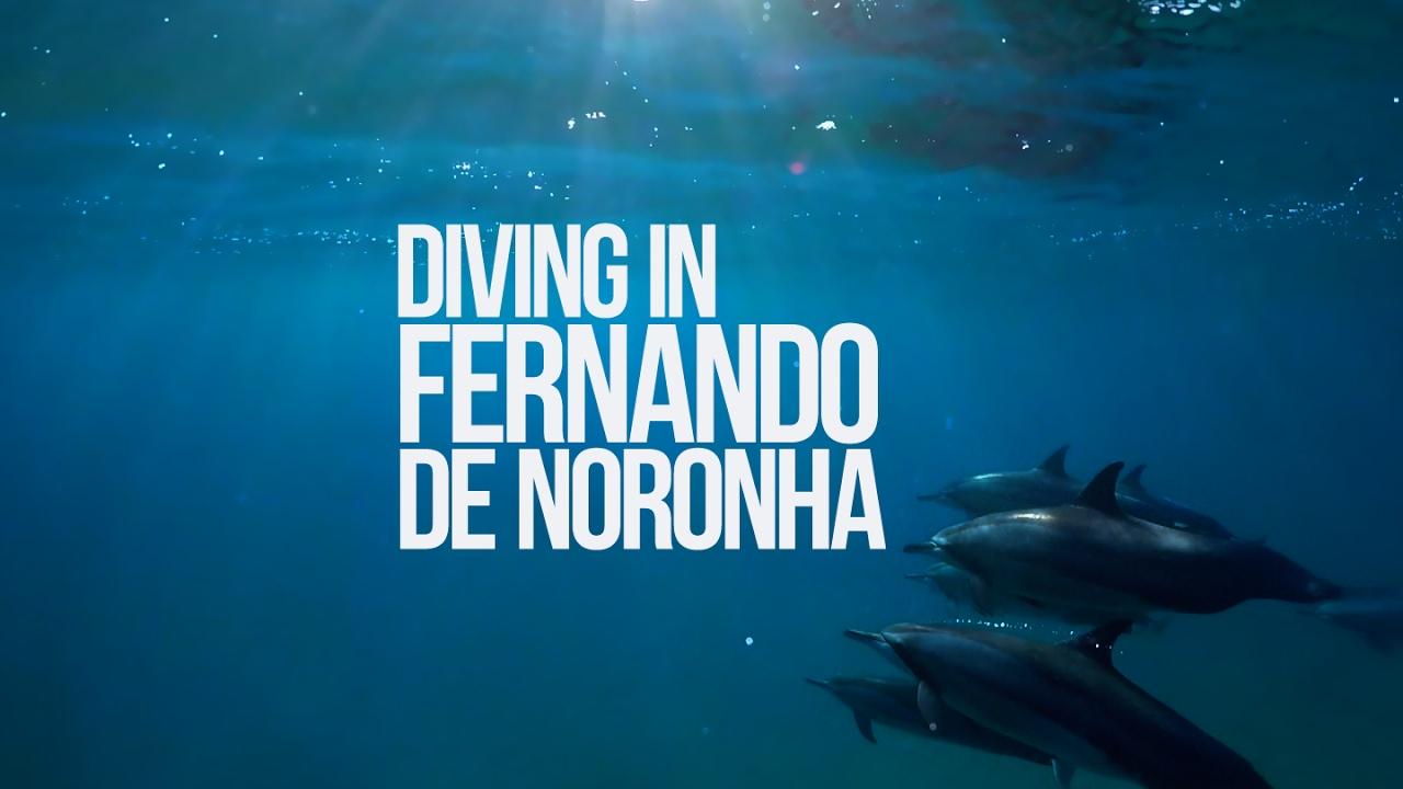 Mergulhando em Fernando de Noronha   Scuba diving in Fernando de Noronha, Brazil