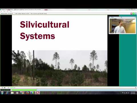 Practical Silviculture for Non-Foresters