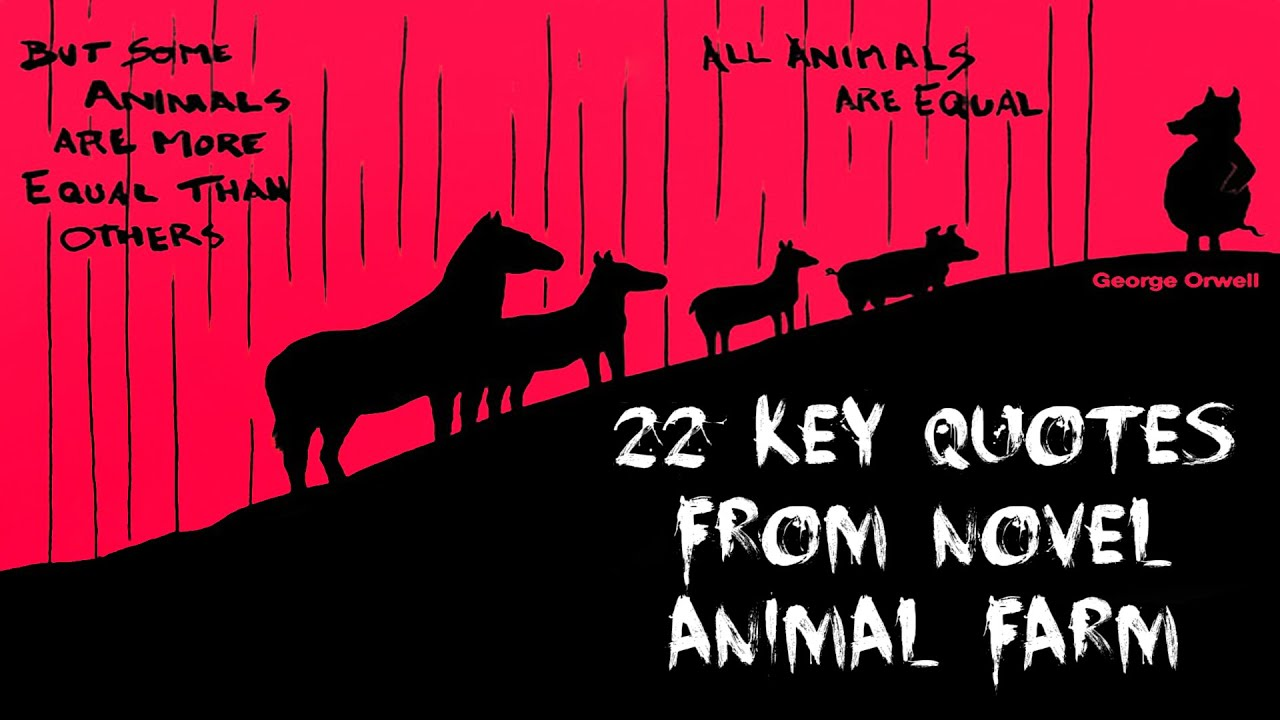 22 Key Quotes From Novel Animal Farm Youtube