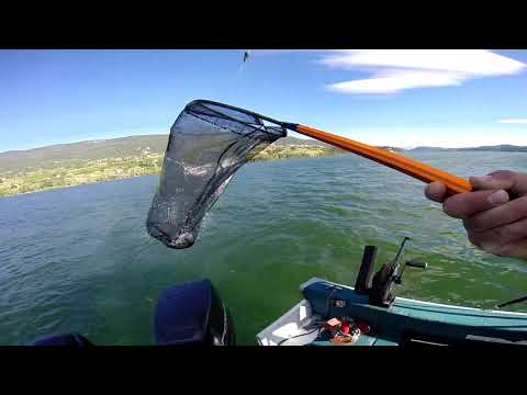 Kokanee Controlled Depth Trolling Wood Lake BC