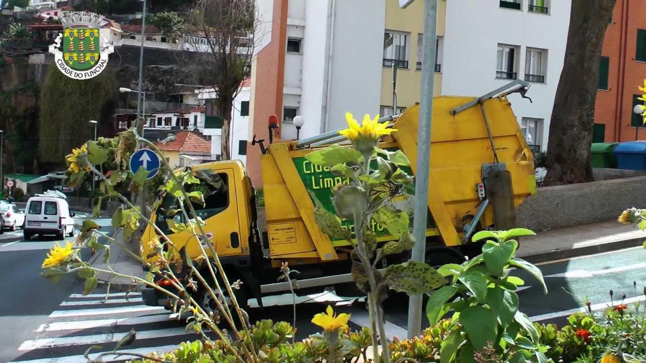 Resultado de imagem para Recolha de Lixo Funchal