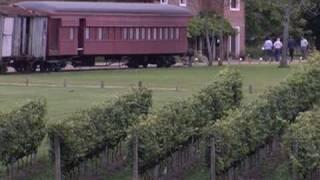 Uruguay: le tannat, petit poucet des vins du nouveau monde