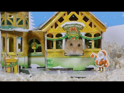 Day 10: Christmas Town - Cute Hamsters: 12 Days of Christmas