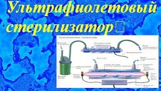 видео Купить УФ стерилизаторы для аквариума.