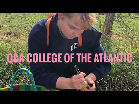 My US College experience- Q&A College of the Atlantic