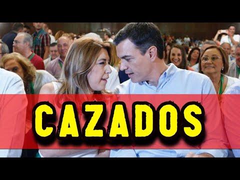 ? CAZAN a PEDRO SÁNCHEZ CREANDO un CHIRINGUITO ?