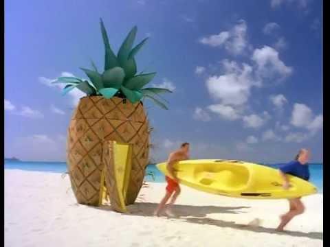 Sponge Bob Sea School/Cayman Islands_Dad