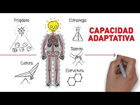 Evolución Capacidad Adaptativa - Juan Carlos Eichholz