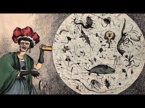 Germs, Genes and Genesis: The History of Infectious Disease - Professor Steve Jones