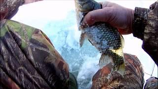 Зимняя рыбалка в Саратовской области. Лебедёвское водохранилище. Ловим карася.