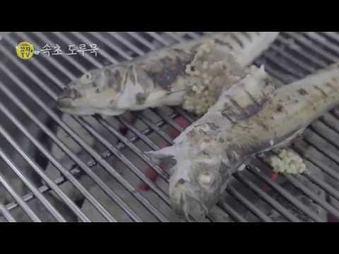 2016감자TV 강원도 미식가 속초도루묵
