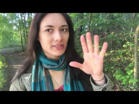 Vlog #194 - Fabrikneue Diesel verbieten?!// Wer profitiert eigentlich davon???