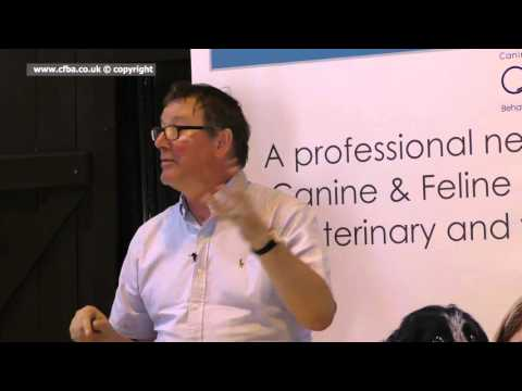 FEEDING RAW DOG FOOD AND BEHAVIOUR CHANGES -   DR DAVID SANDS