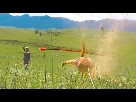 Prairie Dog Bow & Blowgun Hunter,  Unbelievable Shots!!!