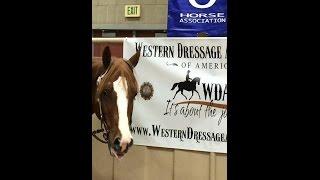 WWDA Kathleen Elliott Western Dressage World Horse Show 2014 Tulsa