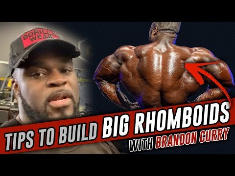 How to Build BIG Rhomboid's with Mr Olympia Brandon Curry