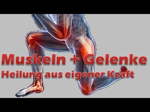 Heilkräuter für Knochen und Gelenke