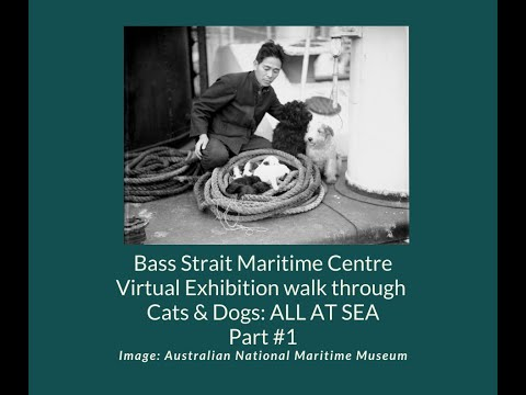 Bass Strait Maritime Centre - Virtual Exhibition walk through - Cats and Dogs
