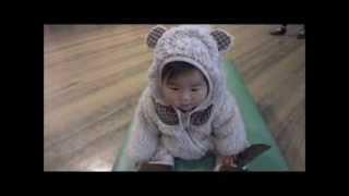 鈴木穂乃香さんです。8ヶ月の時に撮影したものです。 熊のぬいぐるみみ...