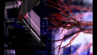 Fragile Machine (Aoineko & Ben Steele, 2005)