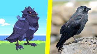 10 New Pokémon Inspired By Real Life   The Countdown