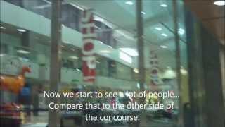 WestJet Trip Report YYC-YYZ-YUL