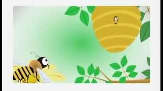 Жизнь пчелы(Образ жизни пчелы - познавательный мультфильм для детей. Наш сайт о меде: http://med-v-zaporozhie.com/, 2012-12-27T22:12:19.000Z)