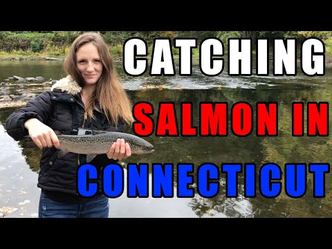 Catching Salmon In Connecticut