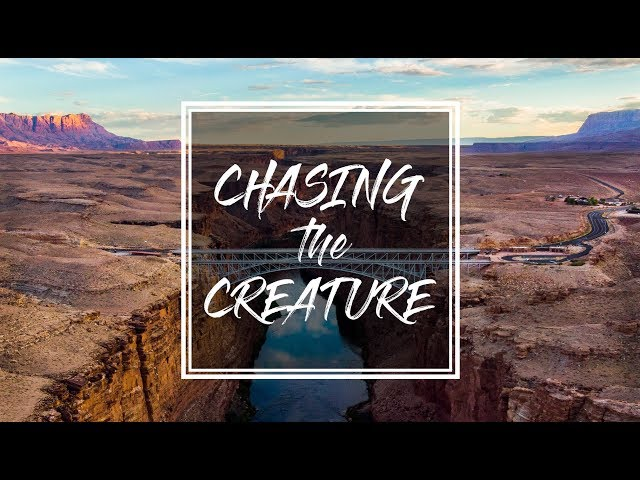 Chasing The Creature - The Lust for Travel Never Ends